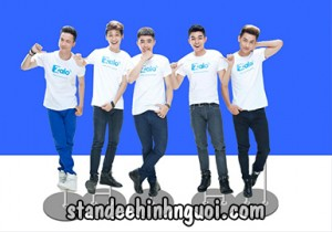 standee hinh ca sy